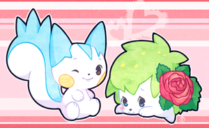 pachi pachi and rose by drill-tail