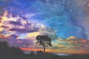 Tree at Magical Hour by SamiraEmelie