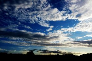 Pasion for SKY by ilonytestal1995
