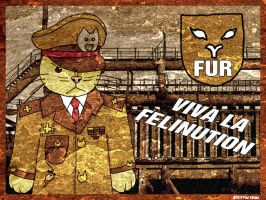Viva La Felinution - Major General Whiskers by chelano