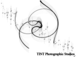Tint Photography Wallpaper by TINTPhotography