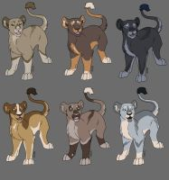 Lion Adoptables - CLOSED by wanderlust-kennels