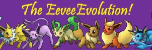 The Eevee Evolution by Dark-Infernape
