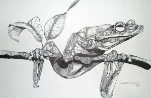 Frog Stippling by vanillafrapp