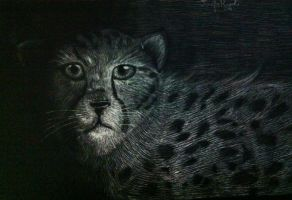 Scratch Board Cheetah by Flashpelt1