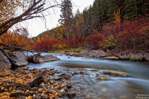 The Edge of Big Cottonwood by mjohanson