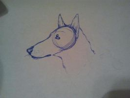 smooth collie doodle by archafobe