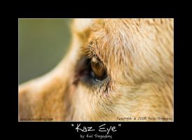 Kaz Eye by koltregaskes