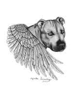 Pit Bull by ExaberationofDecay