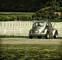 VW Beetle 3 by Csipesz