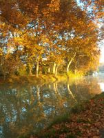 Canal du Midi V by fairling-stock