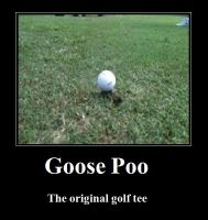 Goose Poo... by Kdogfour