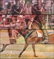 running horse collage by tintoin