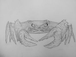 Crab by Lexinator117