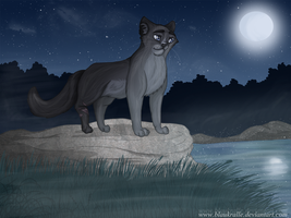 Cinderpelt on the Moonpool by Blaukralle