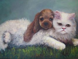 cats AND dogs katzen und hunde by fusunyeremyan