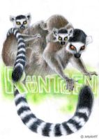 x-ray lemurs by Sarakatt