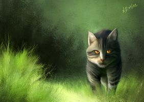 Forest cat by Sigyn85