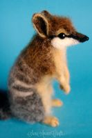 Numbat by SaniAmaniCrafts