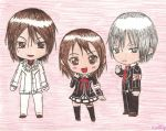 Vampire Knight by Aimi-Sora