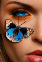 Butterfly Eye by asdfgfunky