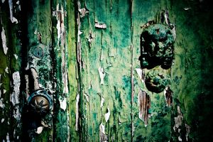 the green door 2 by puddingtown