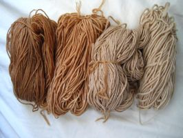 Tea-dyed yarn by sentienttree