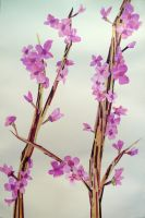 Branch and Pink Flowers by abflabby