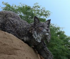 Bobcat Statue 1 by MorganCG