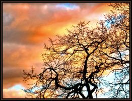 Flaming Sky by softcell72
