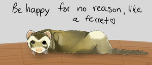 Be Happy like a Ferret by catz537