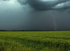 Lightning by gubar