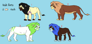 Cheap Lion Adopts by BlackWolf1112-ADOPTS