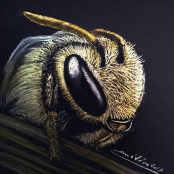 bee  by cameleon2000x