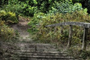 stairs HDR by panRobus