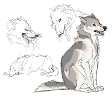 Wolf Practice by ipann
