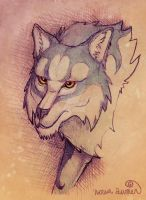 Wolf sketch by toshema