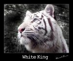 White King by ischarm
