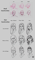 Head and Hair Guide by morebodyparts