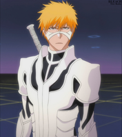 Ichigo's Full Fullbring Form by Sunite