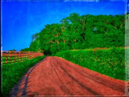 The road less travelled by rhb4