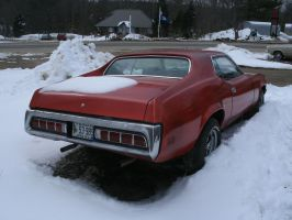 Snow Cougar rear by noneofurbussiness