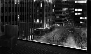 View of the Park BW by traumadesigns