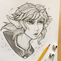 Hero of the Wild - Sketch by TheLittleArtyThing