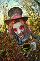 The Rude Hatter 8 by newspin