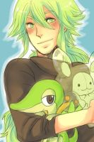 N and a few pokemon by vanillatte54