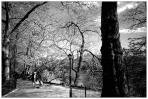 Springtime in Central Park by asymons