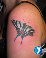 Butterfly Tattoo by xandervoron