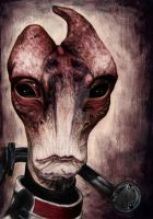 Mordin Solus by TheHollyLord