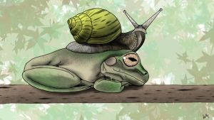 Snail and Frog by WilMacAllister